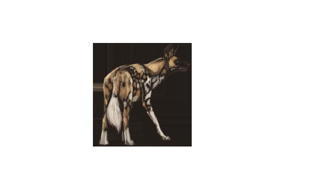 wild-dog icon gallery