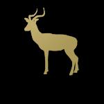 icon-body-black-impala